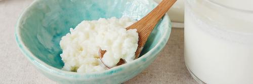 Como cuidar do Kefir de leite? Aprenda o passo-a-passo com fotos!